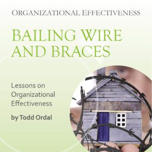 Cover of book from executive advisor Todd Ordal - Organizational Effectiveness